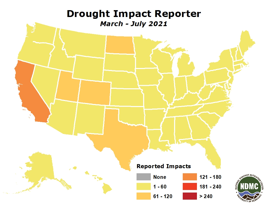 NDMC's Drought Impact Reporter