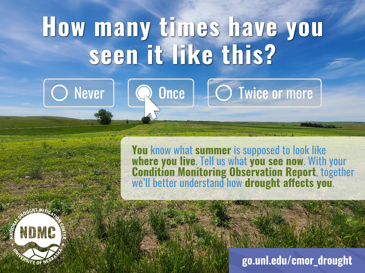 Conditional Monitoring Observations graphic that shows summer grass land in North Dakota and asks users to indicate how often they observe these conditions.